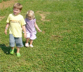 A perfect lawn for your children is one without chemicals.